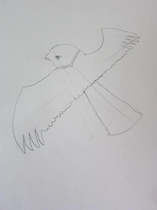 Zeichenstudie fliegender Vogel