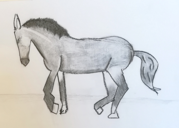 Zeichenstudie gehender Esel oder Pferd man weiß es nicht so recht