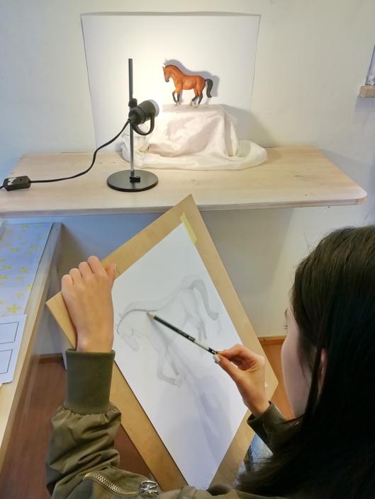 Zeichnung Pferdestudie