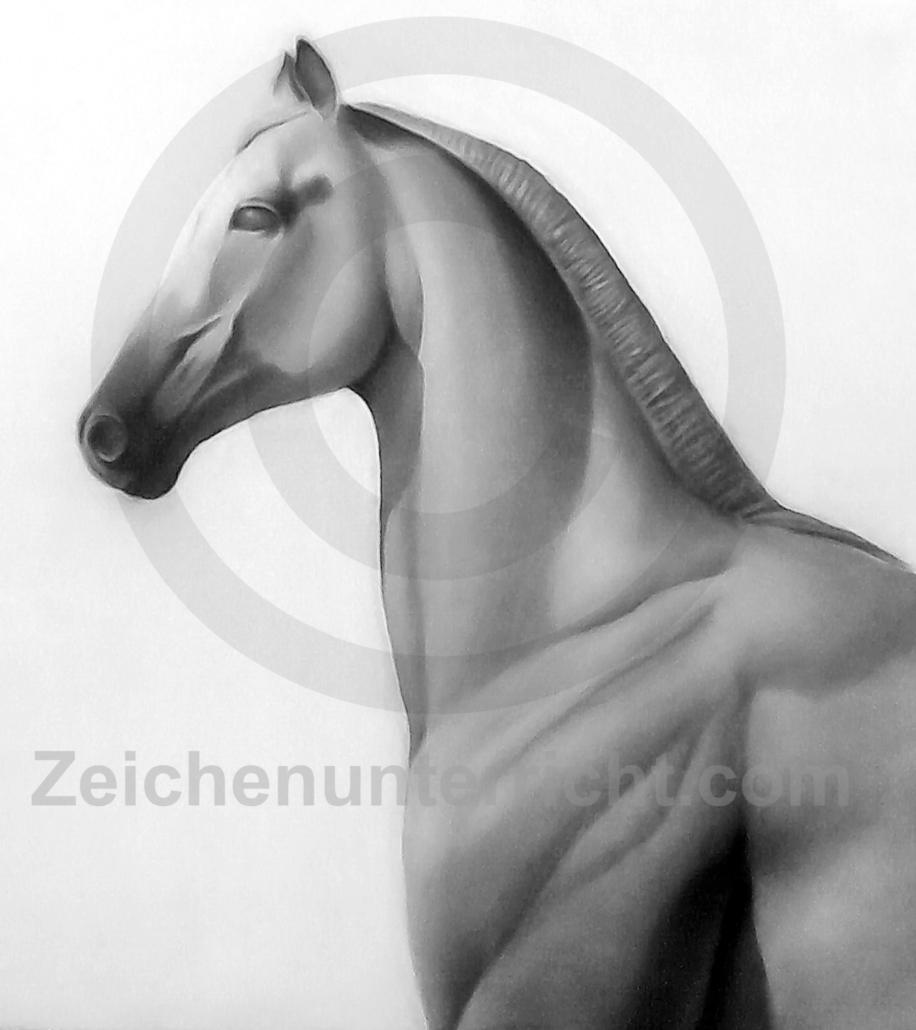 archaische Pferde Studie